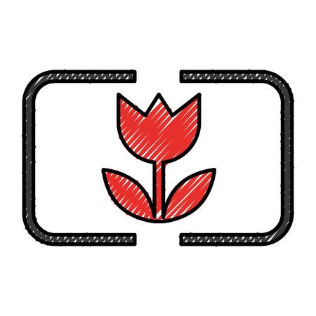 Photo brightness camera item vector illustration design