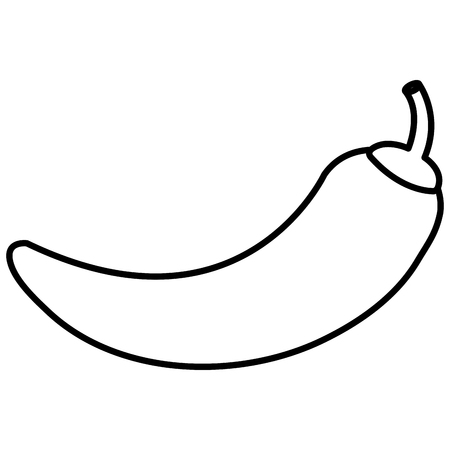 chili pepper isolated icon vector illustration design