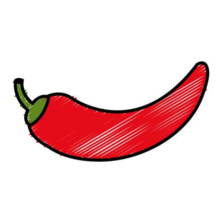 capsaicin: Chili pepper isolated icon vector illustration design Illustration