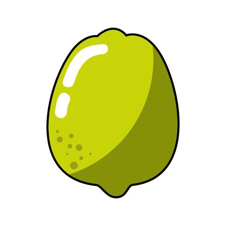 A lemon fruit icon over white background. vector illustration Illustration