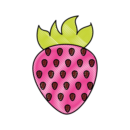 sweet strawberry fruit vector illustration graphic design