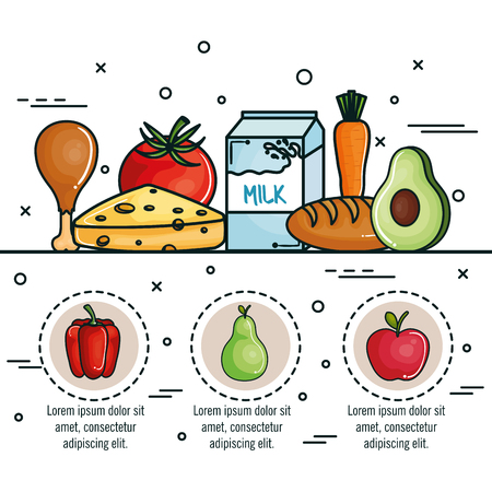 Food infographic over white background. Vector illustration. Illustration