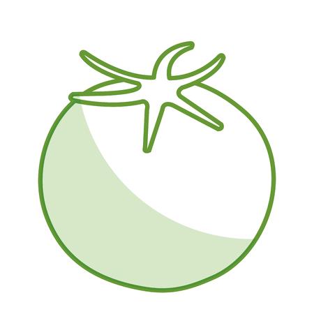 fresh tomate vegetable icon vector illustration design Ilustração