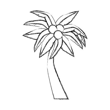 ココナッツ ベクトル イラスト デザインとヤシの熱帯木