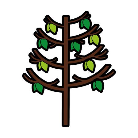 tree plant autumn icon vector illustration design Reklamní fotografie - 78517693