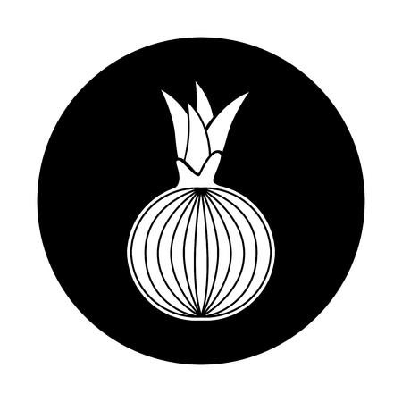 onion fresh vegetable icon vector illustration design Illustration