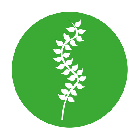 plantain herb: Seaweed silhouette isolated icon vector illustration design Illustration
