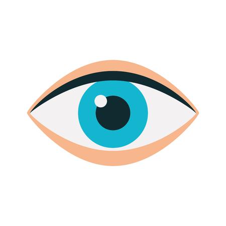 eye human isolated icon vector illustration design