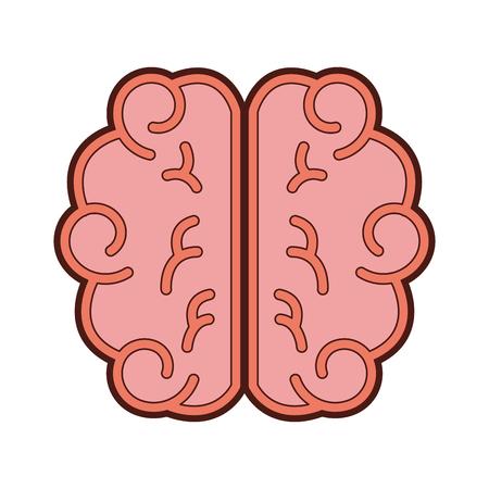 brain human isolated icon vector illustration design Illustration