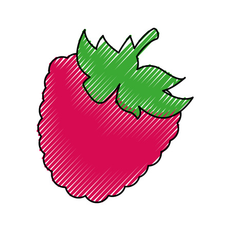 blackberry fresh fruit icon vector illustration design