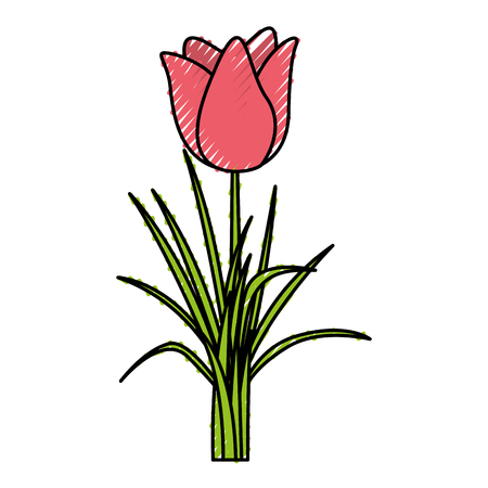 cute rose isolated icon vector illustration design