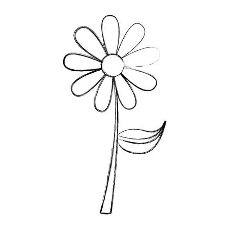 cute sunflower isolated icon vector illustration design