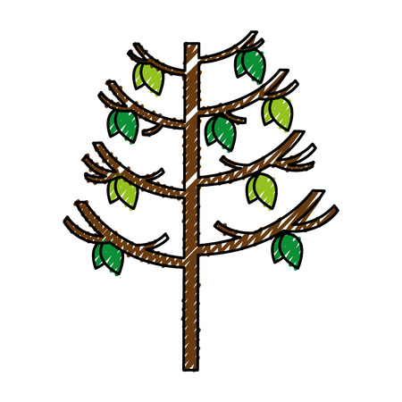 tree plant autumn icon vector illustration design