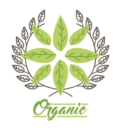 vecor: Leaves organic icon vector illustration design graphic