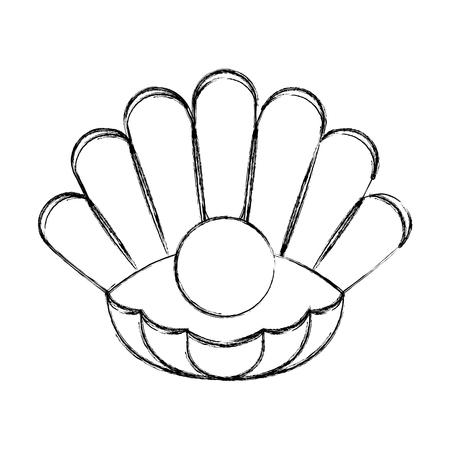 Natürliche offene Perle Shell Vektor Illustration Grafikdesign Standard-Bild - 79349084