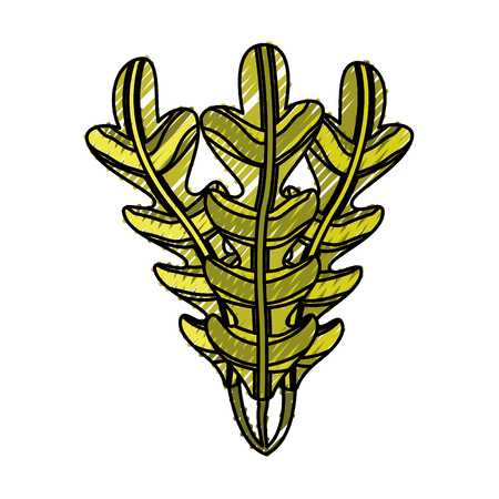 isolated seaweed ocean life vector illustration graphic design Ilustrace