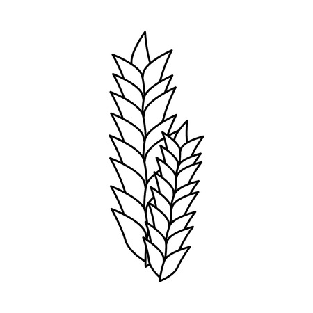 Wheat ears icon over white background. vector illustration