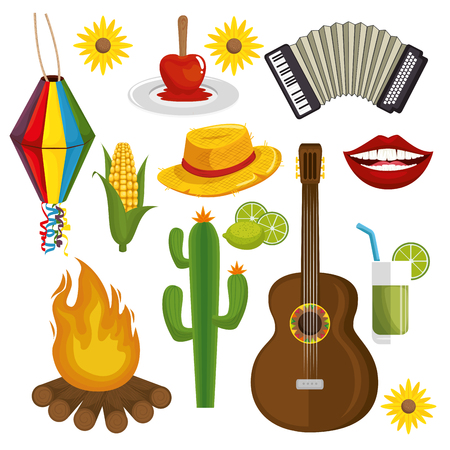 Festa junina related objects over white background vector illustration