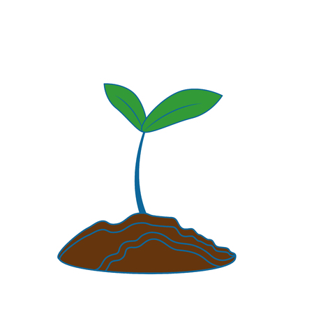 Plant with leaves icon vector illustration graphic design Çizim