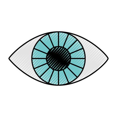 finding: eye human isolated icon vector illustration design
