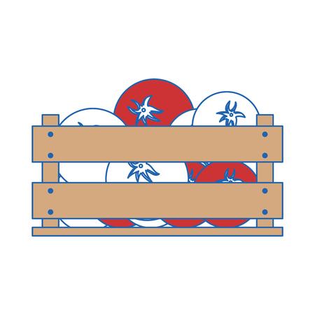 tomatos in wood box icon vector illustration graphic design Çizim
