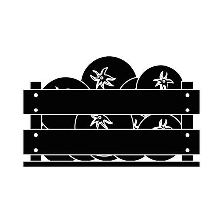 tomatos in wood box icon vector illustration graphic design Illustration