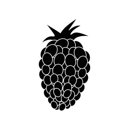 新鮮なブラックベリー フルーツ アイコン ベクトル イラスト グラフィック デザイン