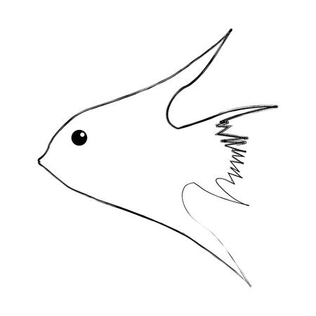 이국적인 물고기 실루엣 아이콘 벡터 일러스트 디자인