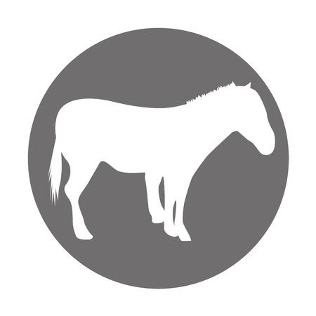 Paard silhouet geïsoleerd pictogram vector illustratie ontwerp Stock Illustratie