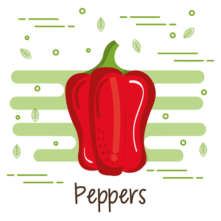 Colorful pepper over white background vector illustration