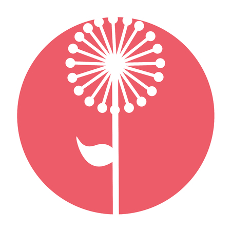 cute exotic flower dandelion vector illustration design