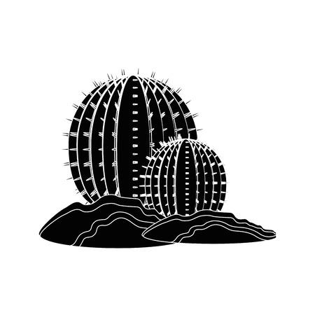 Cactus desert plant icon vector illustration graphic design