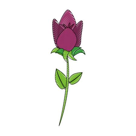 Beautiful ornamental flowers icon vector illustration graphic design Иллюстрация