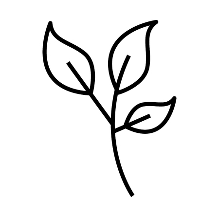 Leaf plant isolated icon vector illustration design. Illustration