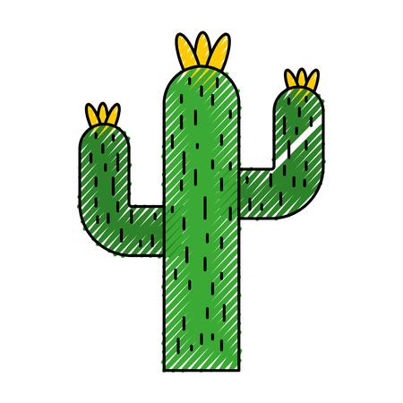 cactus desert isolated icon vector illustration design