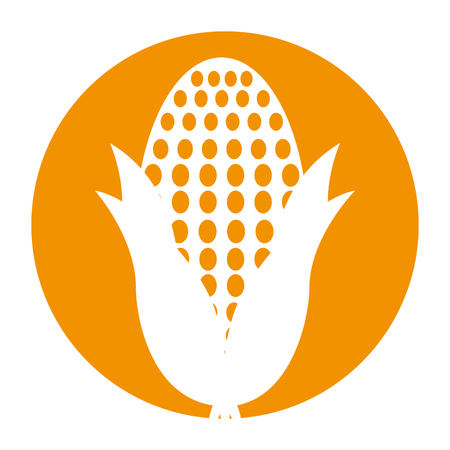 cob corn isolated icon vector illustration design