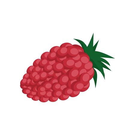 blackberry fruit icon over white background vector illustration Ilustração