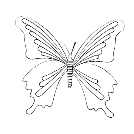 Sketch Draw Butterfly Cartoon Vector Graphic Design Royalty Free