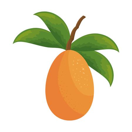 흰색 배경 위에 망고 과일 아이콘 화려한 디자인 벡터 일러스트 레이 션