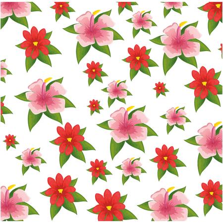 tropical flowers background over white background colorful design vector illustration Illustration