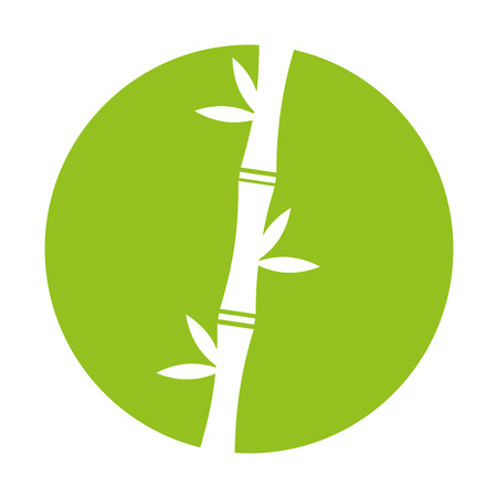 bamboo stem natural icon vector illustration design