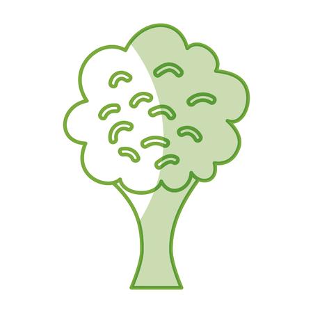 ブロッコリーフレッシュ野菜分離アイコンベクターイラストデザイン  イラスト・ベクター素材