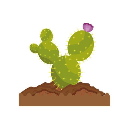 Icône de cactus sur fond blanc illustration vectorielle Banque d'images - 80045977