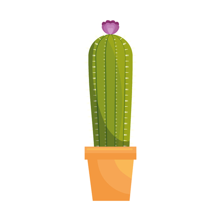 cactus in a pot icon over white background vector illustration