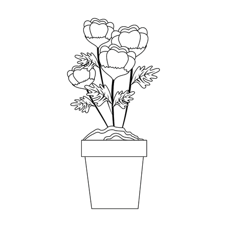 flowers in a pot icon over white background vector illustration