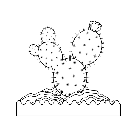 cactus icon over white background vector illustration