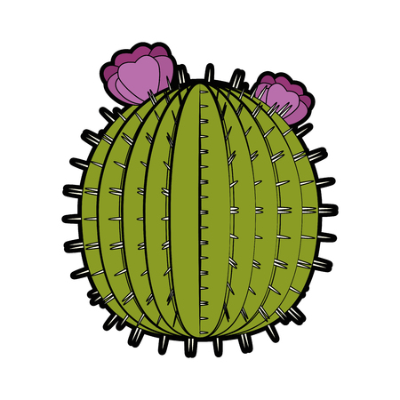 cactus icon over white background colorful design vector illustration