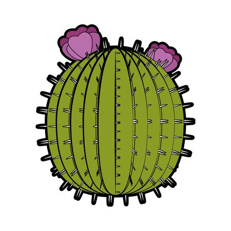 cactus icon over white background colorful design vector illustration