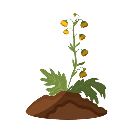 beautiful flowers growing icon over white background vector illustration Stock fotó - 80046457