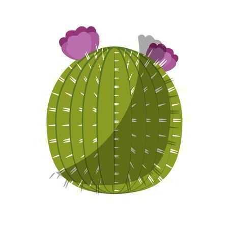 Kaktus-Symbol auf weißem Hintergrund bunte Design Vektor-Illustration Standard-Bild - 80046821